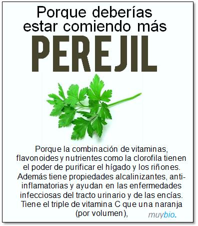 Superalimento 1 - EL Perejil